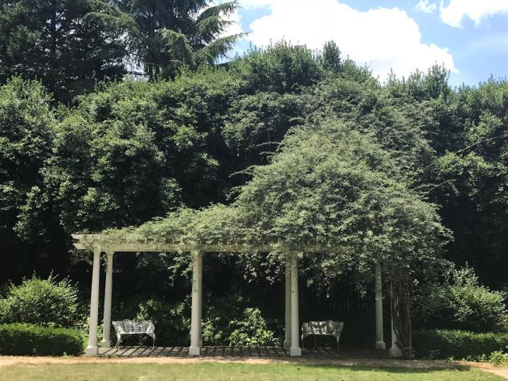 Lake Simpson Garden.jpg